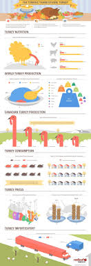 51 best thanksgiving infographics images on info