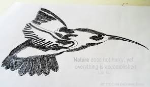 quail bird drawing with quotation about nature