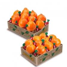 fruit by mail florida mail order fruit gift baskets online by dundee groves