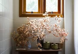 Livingroom Light Free Images Nature Branch Light Plant Flower Glass Home