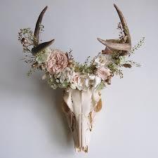 best 25 deer horns decor ideas on elk antlers deer