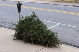 Christmas Tree Pick Up Fayetteville To Offer Curbside Christmas Tree Pickup