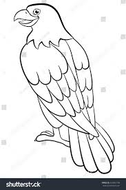 coloring pages wild birds cute eagle stock vector 433861708