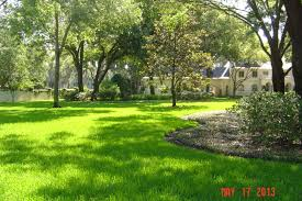 Beautiful Landscapes Tampa Bay Landscaping U0026 Horticultural Services Building