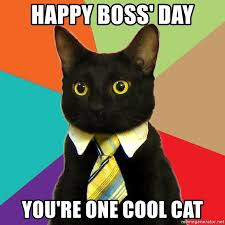 Cool Cat Meme - happy boss day you re one cool cat business cat meme generator