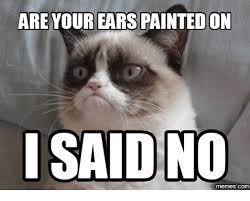 I Said No Meme - are your ears painted on said no com said meme on me me