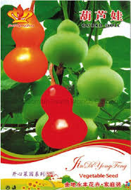 compare prices on ornamental gourd shopping buy low price