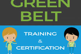 Six Sigma Black Belt Resume Examples by Six Sigma Green Belt Resume Reentrycorps