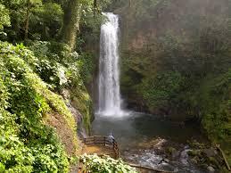 Louisiana waterfalls images Paz waterfall gardens costa rica jpg