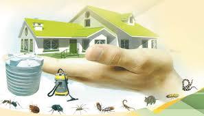 eastdreams oman best pest control company in muscat oman