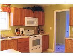 Oak Kitchen Cabinets Wall Color by Oak Kitchen Cabinets Swanky Rustic Oak Kitchen Cabinets Kitchen