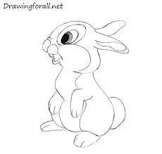 drawing rabbit drawing pinterest rabbit and drawings