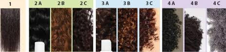 Hair Types by What Is My Hair Type Plant Based Ethnic Hair Products