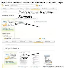 Resume Sample For It Jobs by Download Professional Resume Format Haadyaooverbayresort Com