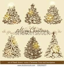 set beautiful ornaments create stock vector