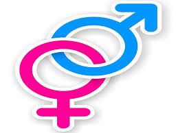 leading u s pediatricians oppose transgender bathroom bill upi com