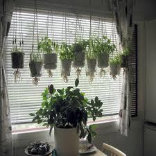 Herb Garden Planter Ideas by Sparkling Hanging From Ceiling Herb Garden Planter Pots Beside