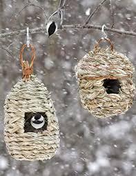 wild birds unlimited november 2014