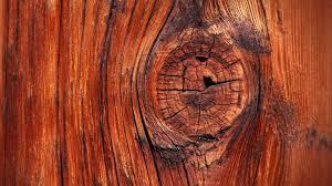 wood wallpapers hd wallpaper wiki