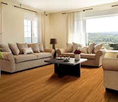 bamboo species hardwood flooring onflooring
