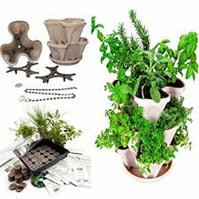 amazon com stackable planter medicinal herb garden starter kit