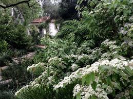create your own u201cmoonlit garden u201d tips from garden designer scott
