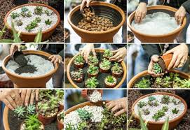 Diy Home Garden Ideas 15 Simple But Creative Diy Ideas To Grow Plants And Decorate Your
