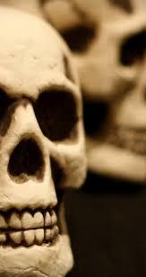 skull halloween background skull in the mirror hd halloween wallpaper