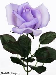 lavender roses lavender single silk
