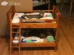 Pallet Bunk Beds Pallet Bunkbeds For Animals 1001 Pallets