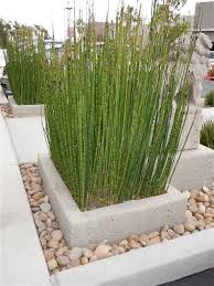 home decor concrete planters for sale dallas tx memphis tn in