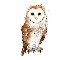 barn owl tattoo google search tattoo ideas pinterest owl
