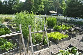 ideas for backyard vegetable garden triyae various design planning