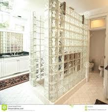 Bathroom Glass Tile Designs Glass Tile Backsplash Pictures Tags Glass Tile Bathroom Glass