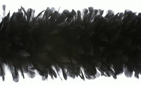 turkey feather boa beautiful thick fluffy turkey ruff boas are the