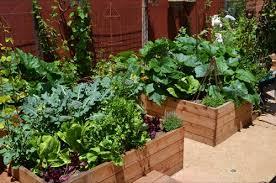 small kitchen garden ideas new concept vertical vegetable garden small backyard