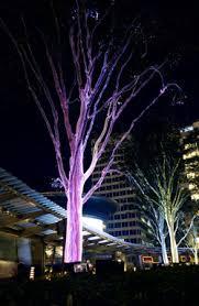 fiber optic light tree ribbon fiber optic lighting detail pinterest fiber optic