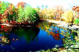 Cottage Rentals Poconos by Poconos Cabin Rental On Private Waterfall Or 2 Acre Pond