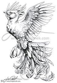 sketches for phoenix tattoo sketch www sketchesxo com