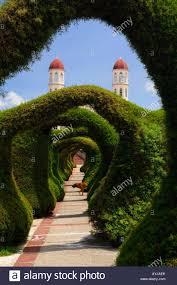 Topiary Dog Topiary Garden Archways In Zarcero Costa Rica With San Rafael