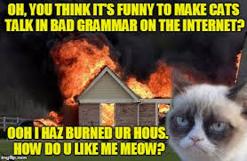 Bad Grammar Meme - oh you think it s funny to make cats talk in bad grammar on the