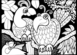 africa parrots africa coloring pages for adults justcolor