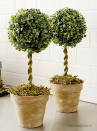 topiary trees best 25 topiary trees ideas on topiaries topiary