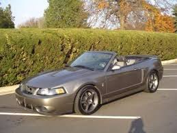 ford mustang 2003 2003 ford mustang 2003 ford mustang cobra convertible for sale