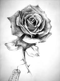 black and white rose tattoo tattoos designs black n whiterose