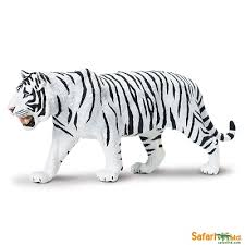 siberian tiger safaripedia