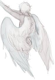 for feathers great and small wing stuff pinterest wings