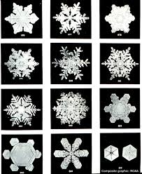 snowflakes free download clip art free clip art on clipart