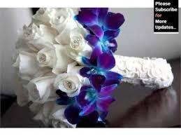 Blue Orchid Flower - blue orchid flower bouquet beautiful orchid flower image ideas