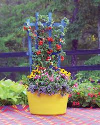 Downspout Trellis Colorful Trellises Kinsman Garden